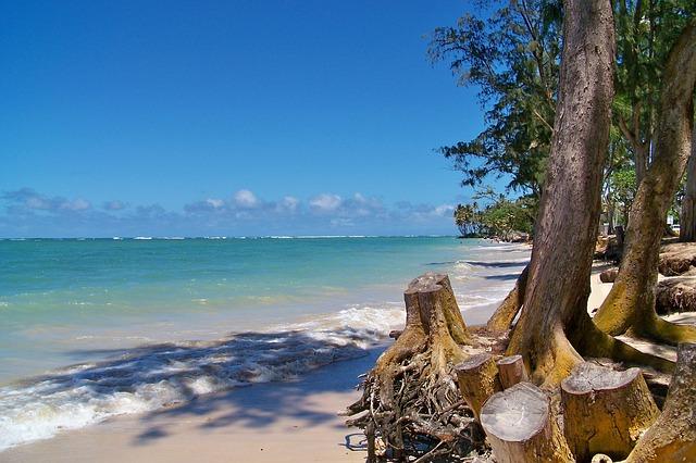 ハワイの超穴場ビーチランキング!カップルのオアフ旅におすすめ!